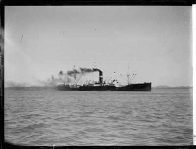 Glass Plate: Steam cargo-passenger vessel