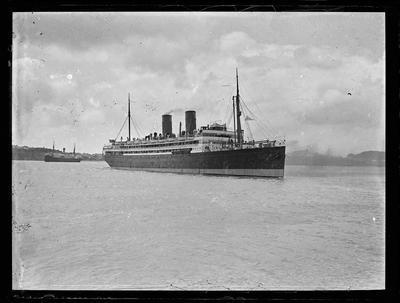 Glass plate: Steam cargo-passenger vessels on the Waitematā