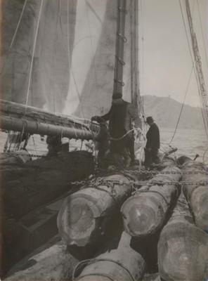 Photograph: RANGI (1905) view at sea, showing crew and cargo of timber logs chained in place on deck
