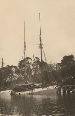 Photograph: RANGI (1905), starboard side view loaded with timber logs on deck and moored at coastal wharf [Aotearoa]